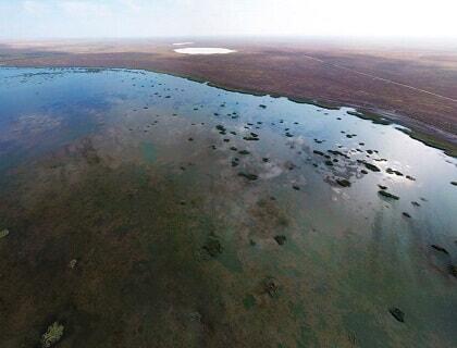 Irgiz-Torgay reserve